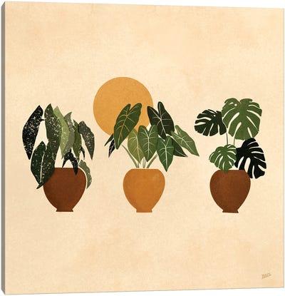 Houseplants I Canvas Art Print