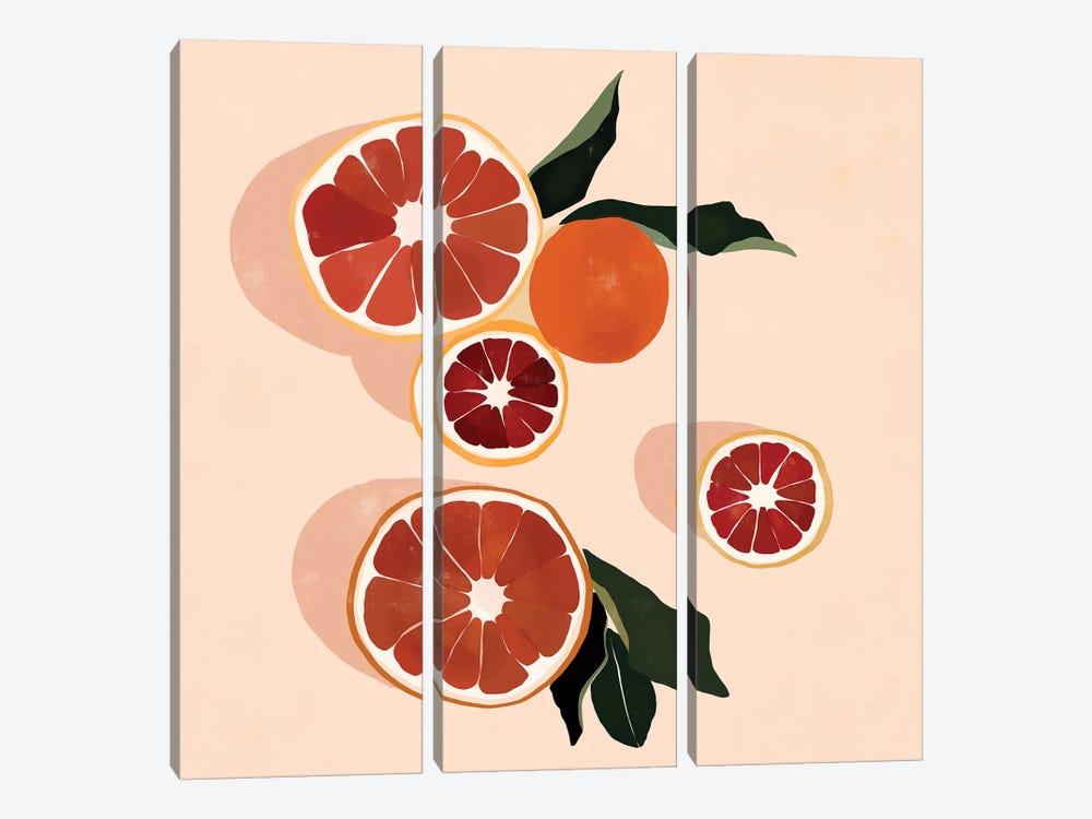 Grapefruit by Bria Nicole 3-piece Canvas Print