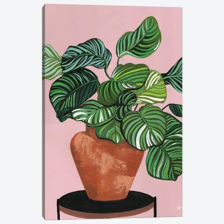 Calatheas Canvas Print #BNC52} by Bria Nicole Canvas Art