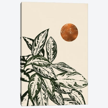 Calas II (bronze) Canvas Print #BNC79} by Bria Nicole Canvas Artwork