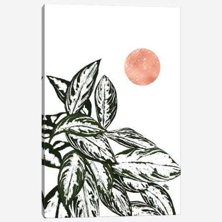 Calas I (rose gold) Canvas Print #BNC83} by Bria Nicole Canvas Art Print