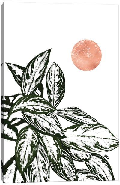 Calas I (rose gold) Canvas Art Print