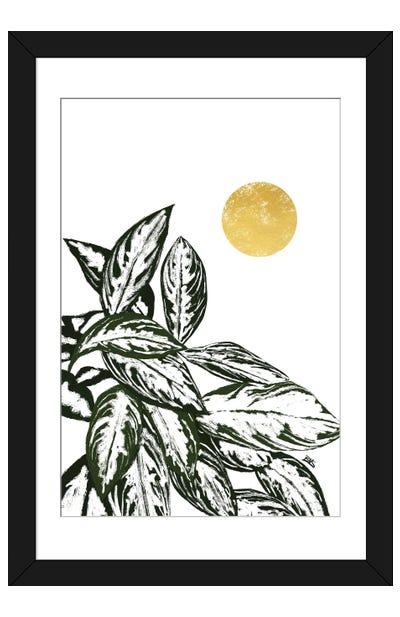 Calas II Framed Art Print