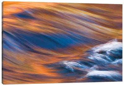 Painterly Impression of a rushing stream reflecting autumn colors. Canvas Art Print
