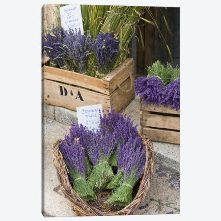 Harvested Lavender Bunches For Sale, Canton de Sault, Provence-Alpes-Cote d'Azur, France Canvas Print #BND1} by Brenda Tharp Canvas Artwork