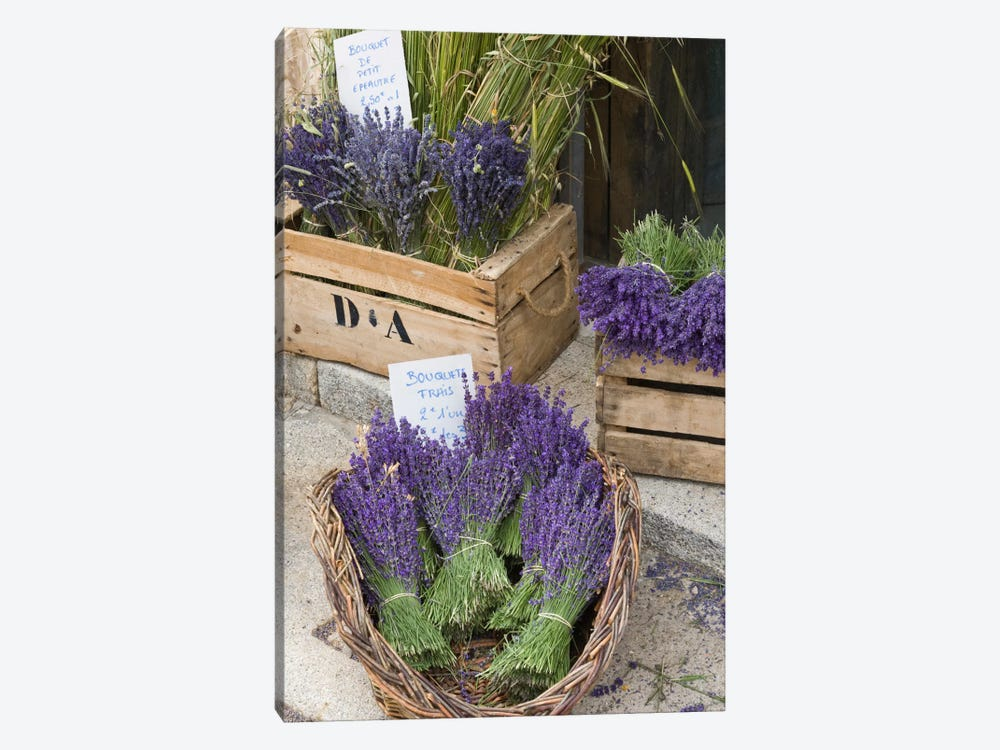 Harvested Lavender Bunches For Sale, Canton de Sault, Provence-Alpes-Cote d'Azur, France by Brenda Tharp 1-piece Canvas Print