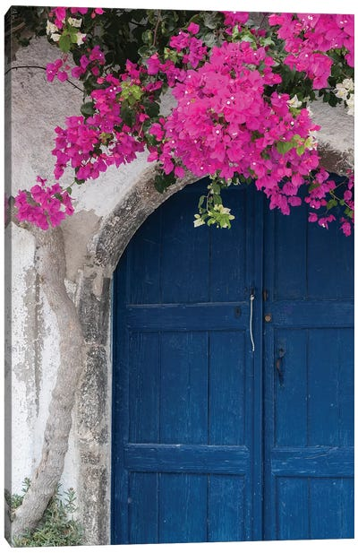 Greece, Santorini. Weathered blue door is framed by bright pink Bougainvillea blossoms. Canvas Art Print