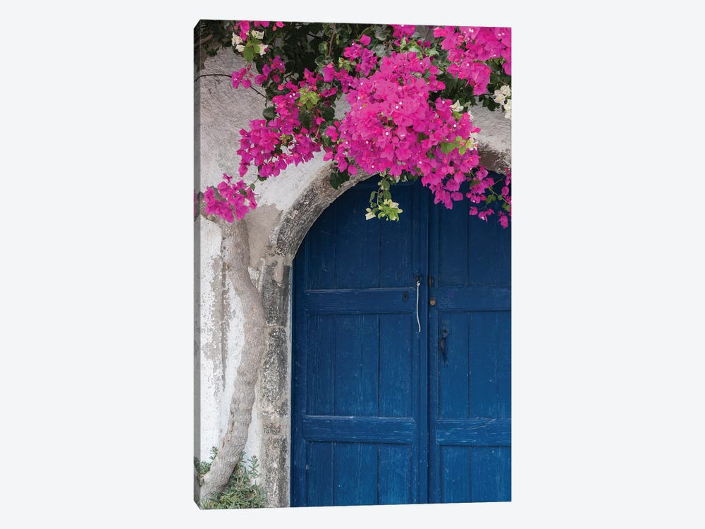 Greece, Santorini. Weathered blue door is framed by bright pink Bougainvillea blossoms. by Brenda Tharp 1-piece Canvas Print