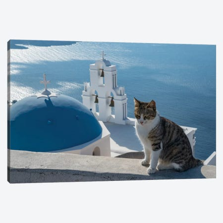 Greece, Santorini. Cat posing on the wall above the iconic Three Bells of Fira 3-Piece Canvas #BND26} by Brenda Tharp Canvas Print