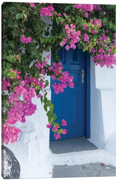 Greece, Santorini. A Picturesque Blue Door Is Surrounded By Pink Bougainvillea In Firostefani. Canvas Art Print