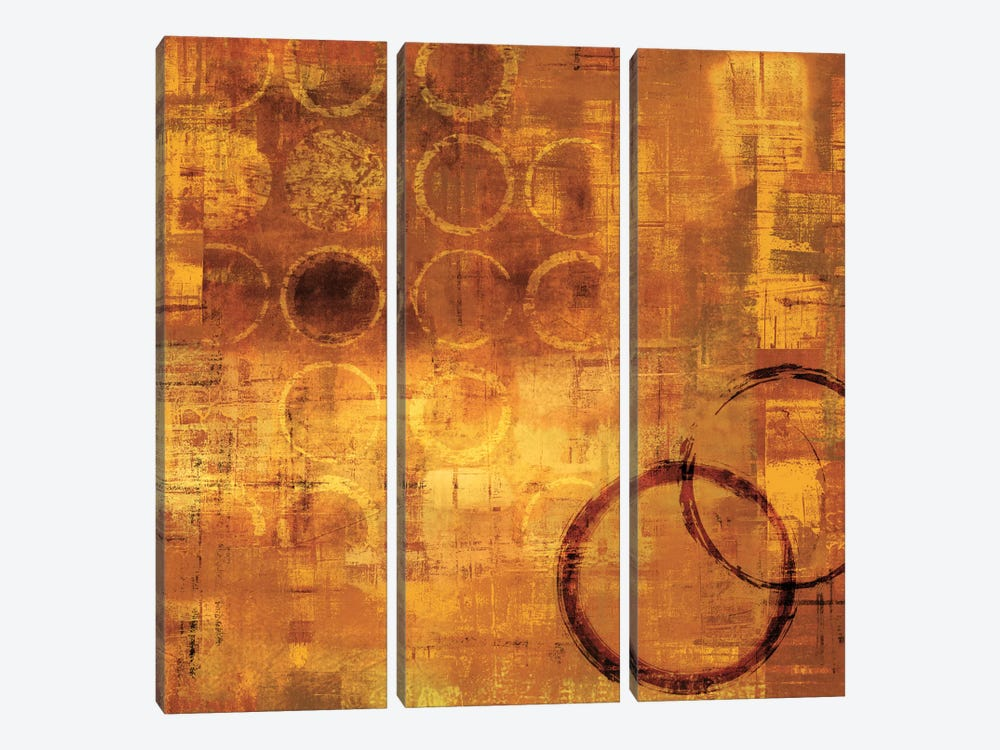 De Oro by Brent Nelson 3-piece Canvas Wall Art