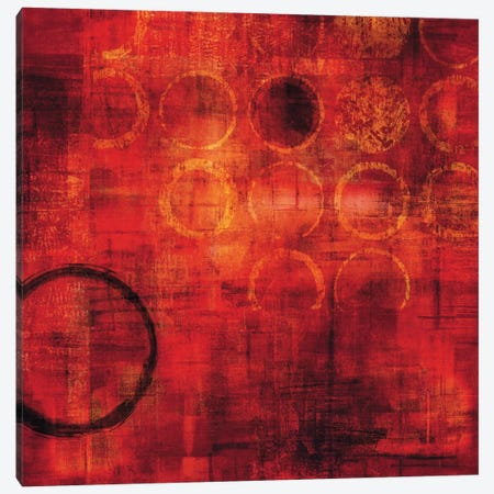 Rojo Canvas Print #BNE78} by Brent Nelson Canvas Art