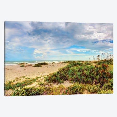Beach Island II Canvas Print #BNN2} by Stede Bonnett Canvas Artwork