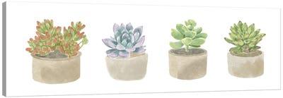 Simple Succulent Panel Canvas Art Print