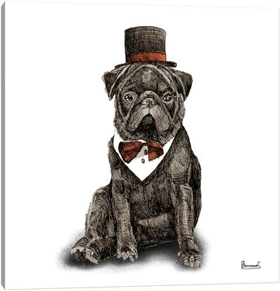 Pugs in hats III Canvas Art Print