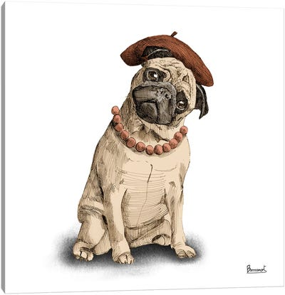 Pugs in hats IV Canvas Art Print