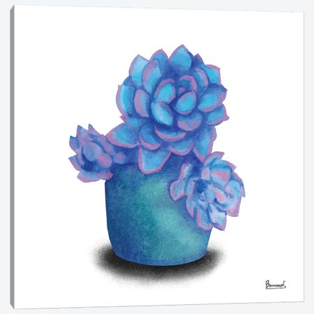 Turquoise Succulents I Canvas Print #BNR26} by Bannarot Canvas Art Print