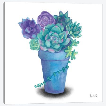 Turquoise Succulents IV Canvas Print #BNR29} by Bannarot Canvas Artwork