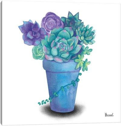 Turquoise Succulents IV Canvas Art Print
