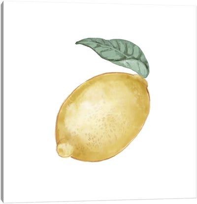 Citrus Limon I Canvas Art Print