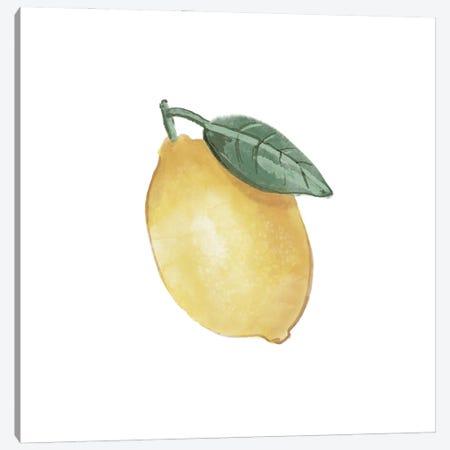 Citrus Limon II Canvas Print #BNR36} by Bannarot Canvas Art