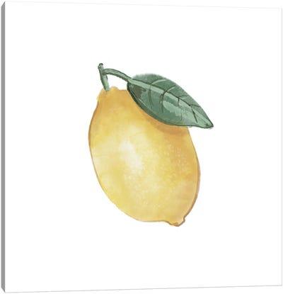 Citrus Limon II Canvas Art Print
