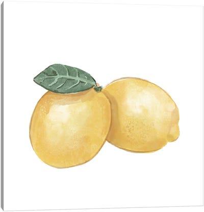 Citrus Limon III Canvas Art Print