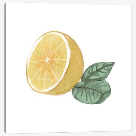 Citrus Limon IV Canvas Print #BNR38} by Bannarot Canvas Print