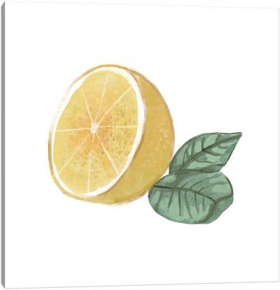 Citrus Limon IV Canvas Art Print