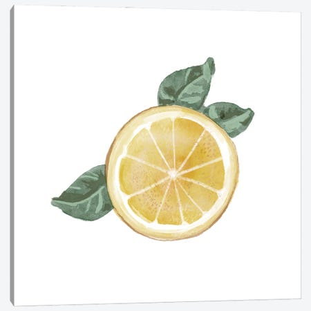 Citrus Limon V Canvas Print #BNR39} by Bannarot Canvas Art Print