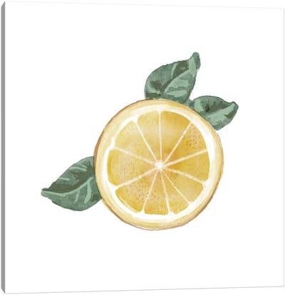 Citrus Limon V Canvas Art Print