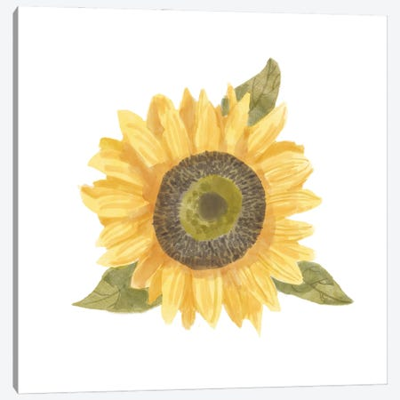 Single Sunflower I Canvas Print #BNR59} by Bannarot Canvas Art Print