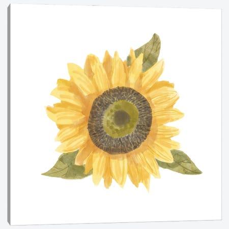 Single Sunflower I Canvas Print #BNR59} by Bannarot Canvas Art Print