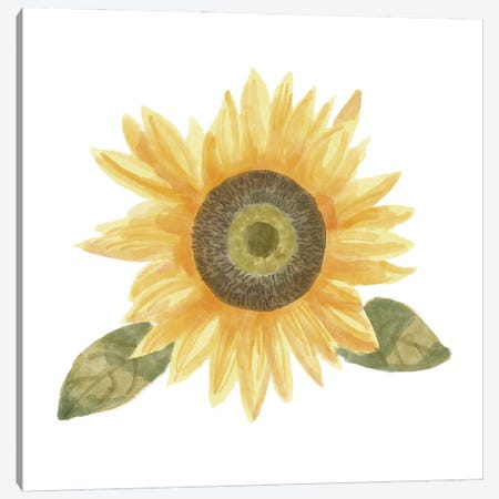 Single Sunflower II Canvas Print #BNR60} by Bannarot Canvas Artwork
