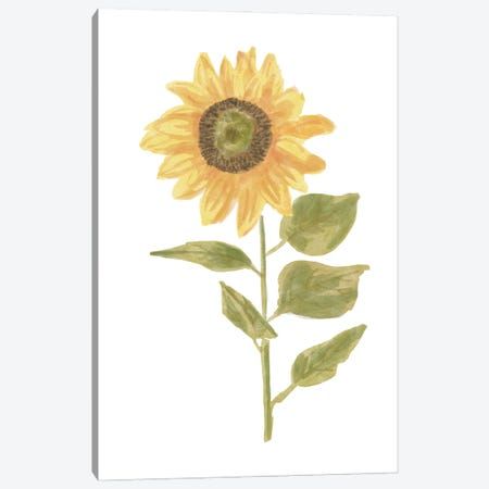 Single Sunflower portrait II Canvas Print #BNR62} by Bannarot Canvas Wall Art