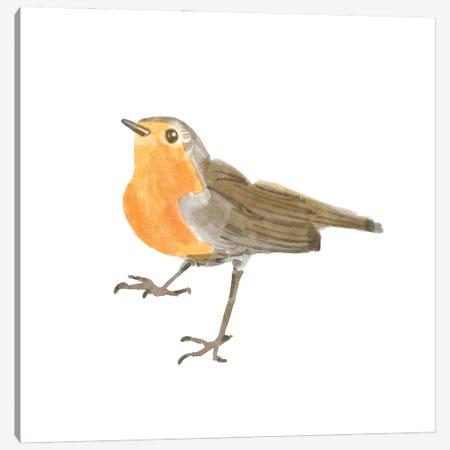 Songbird II Canvas Print #BNR72} by Bannarot Art Print