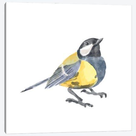 Songbird III Canvas Print #BNR73} by Bannarot Art Print