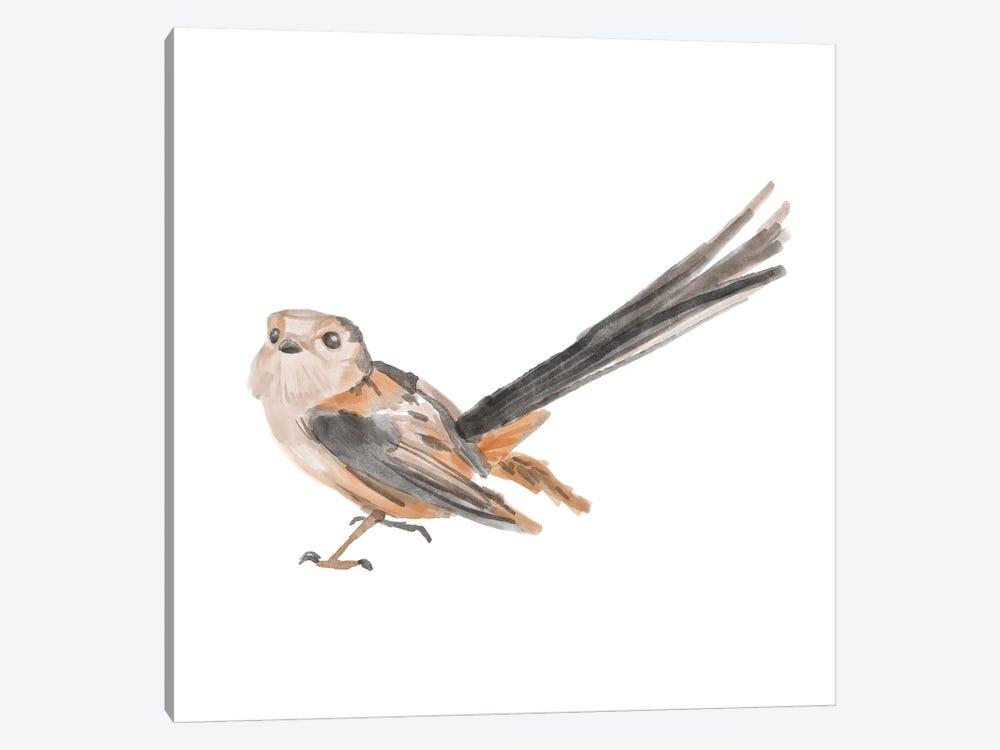 Songbird IV by Bannarot 1-piece Canvas Artwork