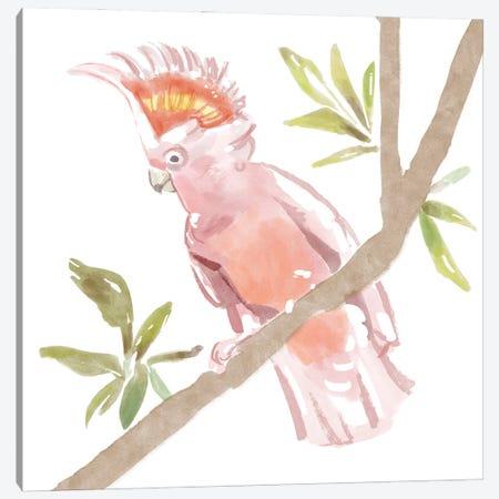 Tropical Cockatoo Canvas Print #BNR76} by Bannarot Canvas Art