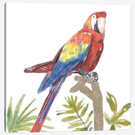 Tropical Parrot Canvas Print #BNR79} by Bannarot Canvas Print
