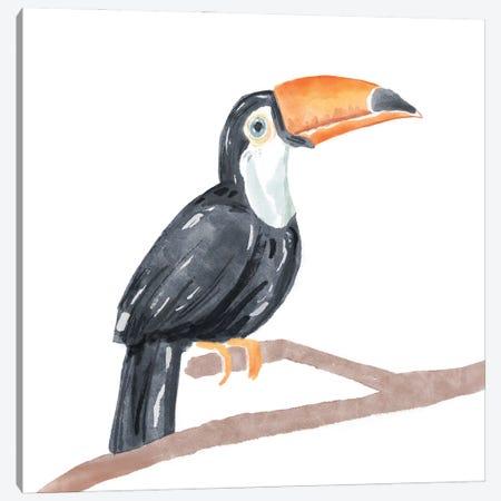 Tropical Toucan I Canvas Print #BNR80} by Bannarot Canvas Art