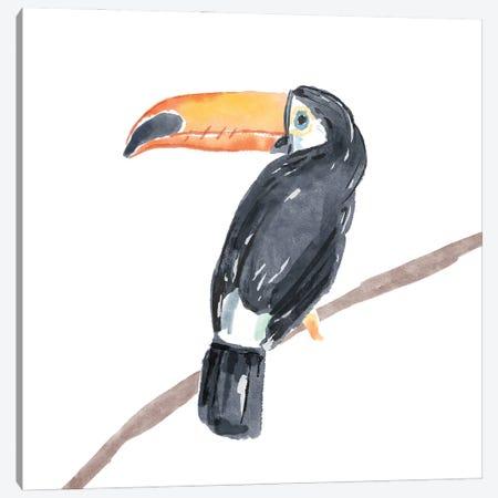 Tropical Toucan II Canvas Print #BNR81} by Bannarot Canvas Wall Art