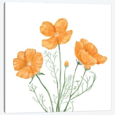Wildflower Group III Canvas Print #BNR89} by Bannarot Canvas Art