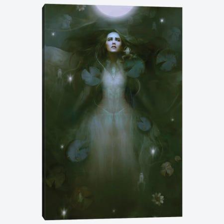 Cosmic Canvas Print #BNT10} by Bente Schlick Canvas Art Print