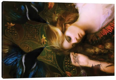 Dreamcatcher Canvas Print #BNT11