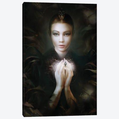 Drosera Canvas Print #BNT12} by Bente Schlick Canvas Print