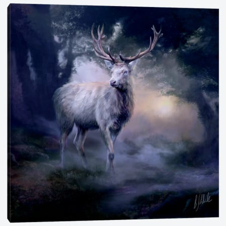 Heart Of The Forest Canvas Print #BNT22} by Bente Schlick Canvas Art