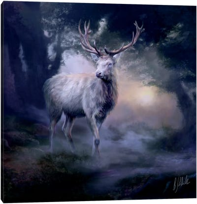 Heart Of The Forest Canvas Art Print