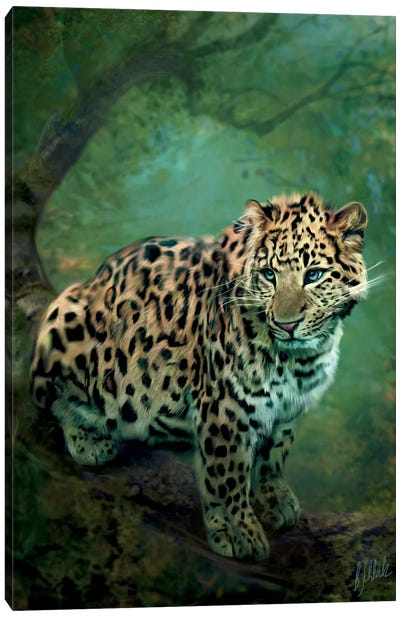 Leopard Canvas Art Print
