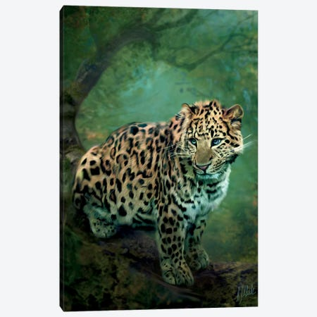 Leopard Canvas Print #BNT28} by Bente Schlick Canvas Artwork